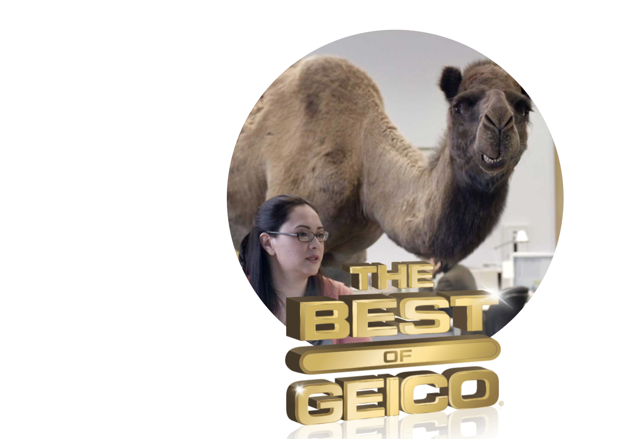 www.geico.com/besto